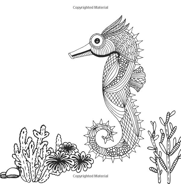 j benson coloring pages | Amazon.com: Colour Ocean: Tropical Paradise: Adult ...