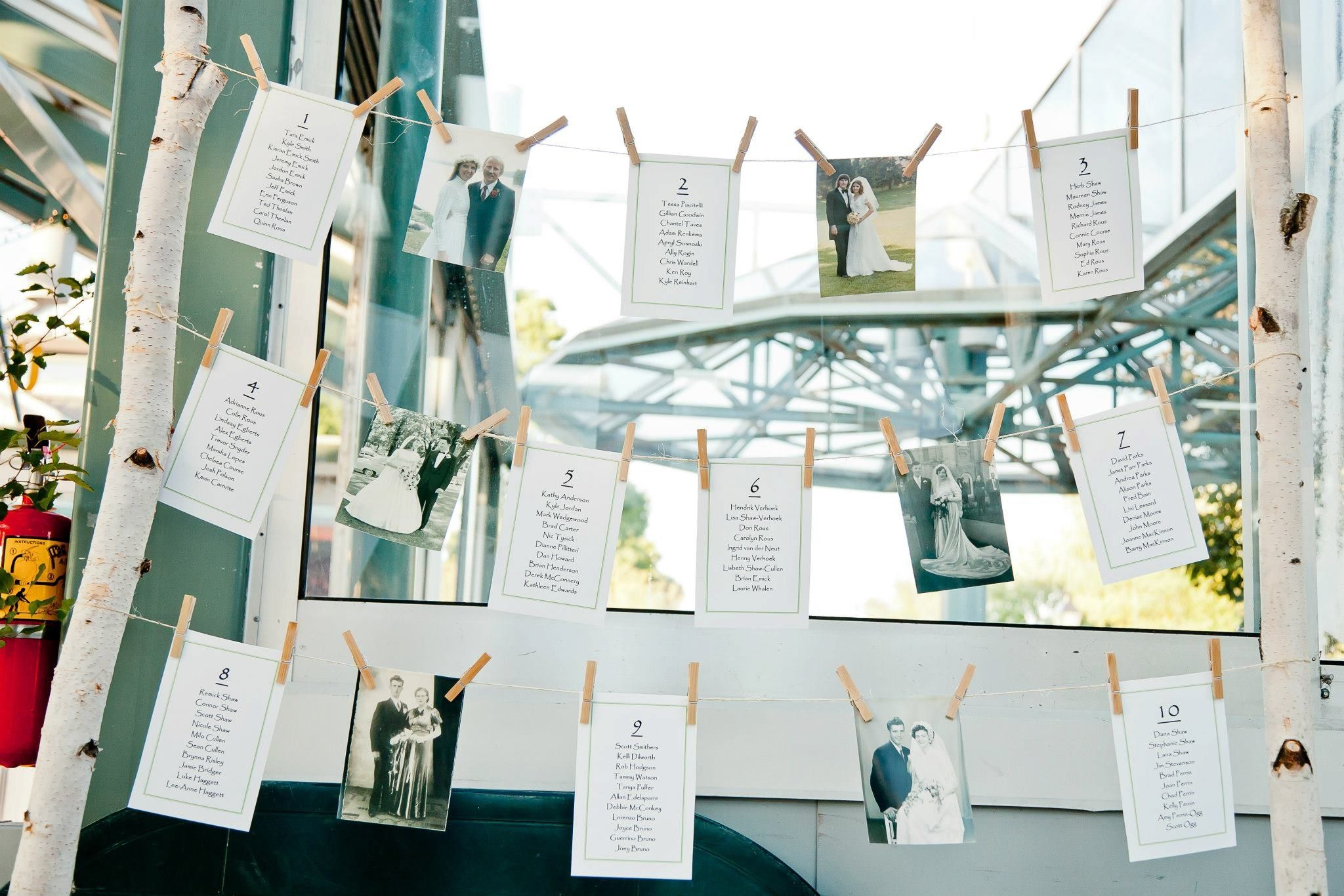 Table seating chart. Used birch trees in metal buckets. Used clothes pins to twine lines to attach family wedding photos and table seating lists.