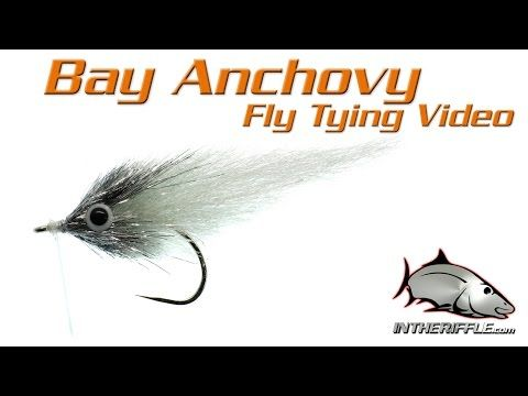 Ep Bay Anchovy Fly Tying Video Instructions Enrico Puglisi Fly Pattern Youtube