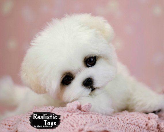 Bubble Puppy Maltese Realistic Life Size Replica Portrait For Pets