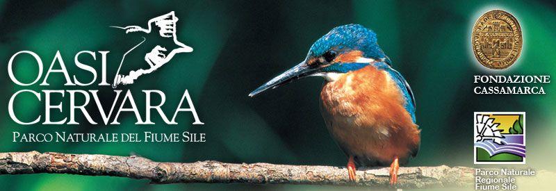 Oasi Cervara wildlfe preserve managed by Dr. Erminio Rampani in Treviso Province in Italy