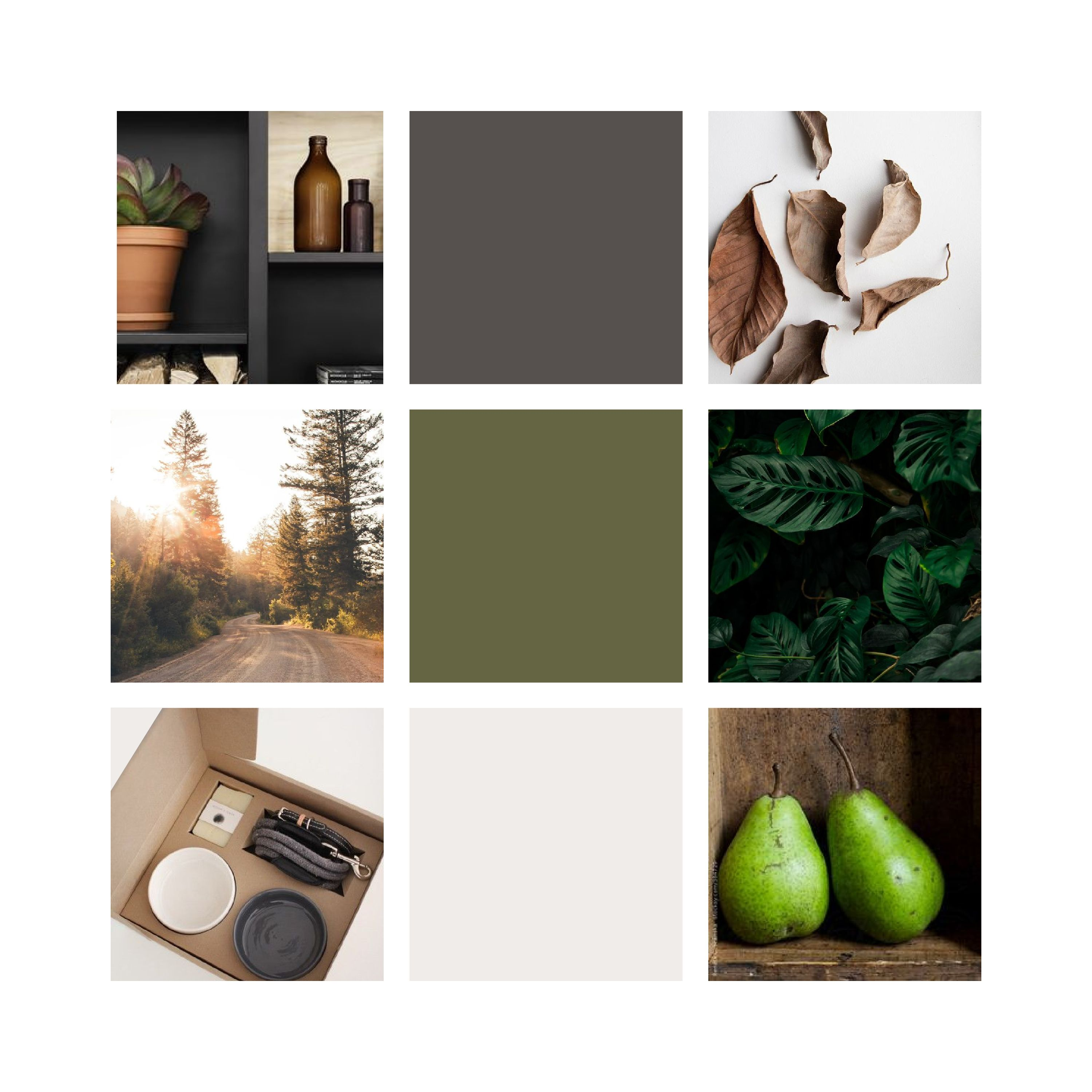 Moody rustic moodboard design by Assimilation Designs.  www.instagram.com/assimilationdesigns  #moodboard #moody #rustic #design #branding #style