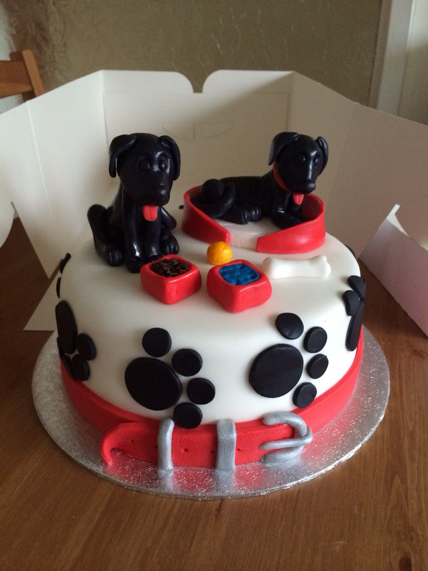 Fondant Sugarpaste Labrador Birthday Shown On Weekend Kitchen On