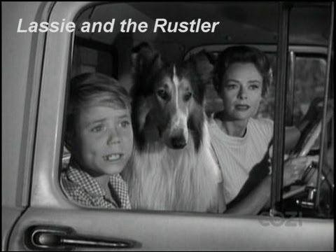 "Lassie - Episode #317 - ""Lassie and the Rustler"" - Season 9, Ep. 26 -  0..."