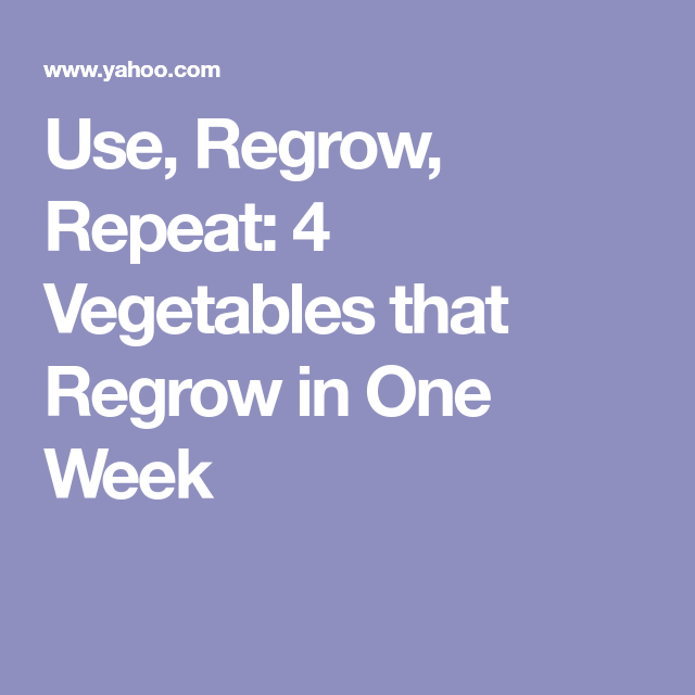 Gardens At Harvest Point Apartments Augusta Ga: Use, Regrow, Repeat: 4 Vegetables That Regrow In One Week