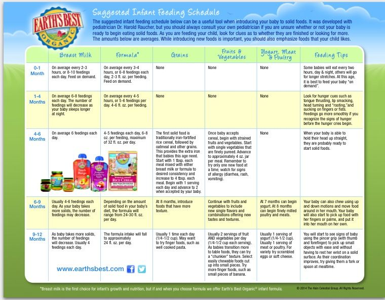 Baby Food Introduction Chart From Earth'S Best Organics | Baby