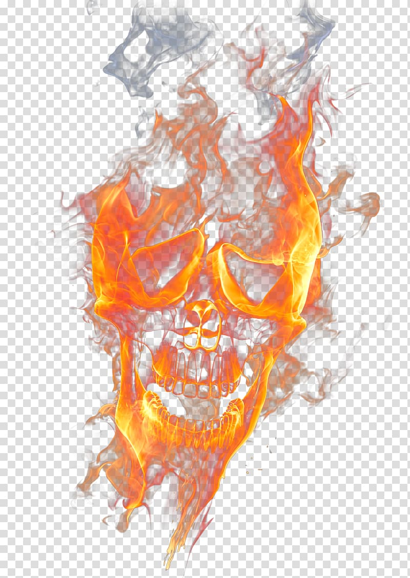 Skull Flame Illustration Skull Fire Flame Flame Skull Transparent Background Png Clipart Skull Fire Fire Icons Drawing Set