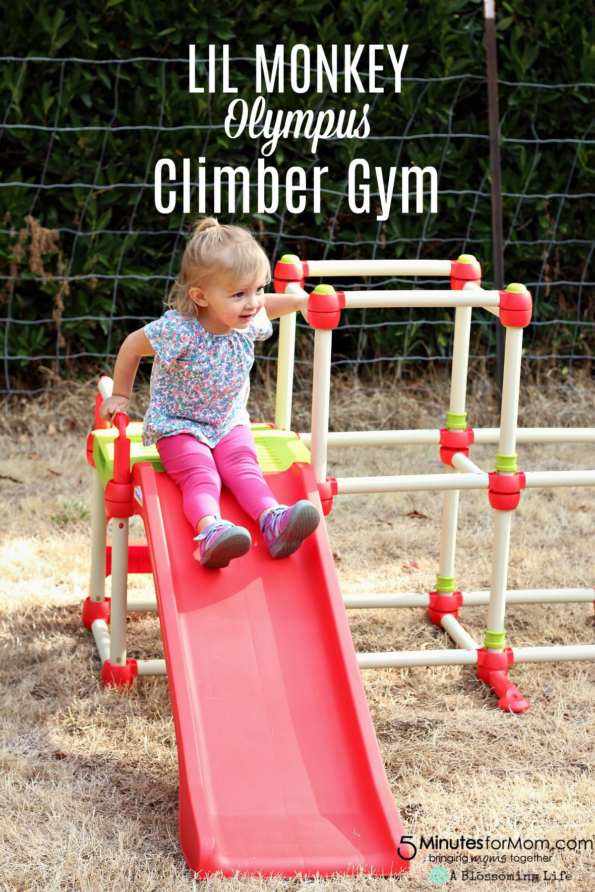 Lil Monkey Olympus Climber Gym Keep Your Little Kids Active And