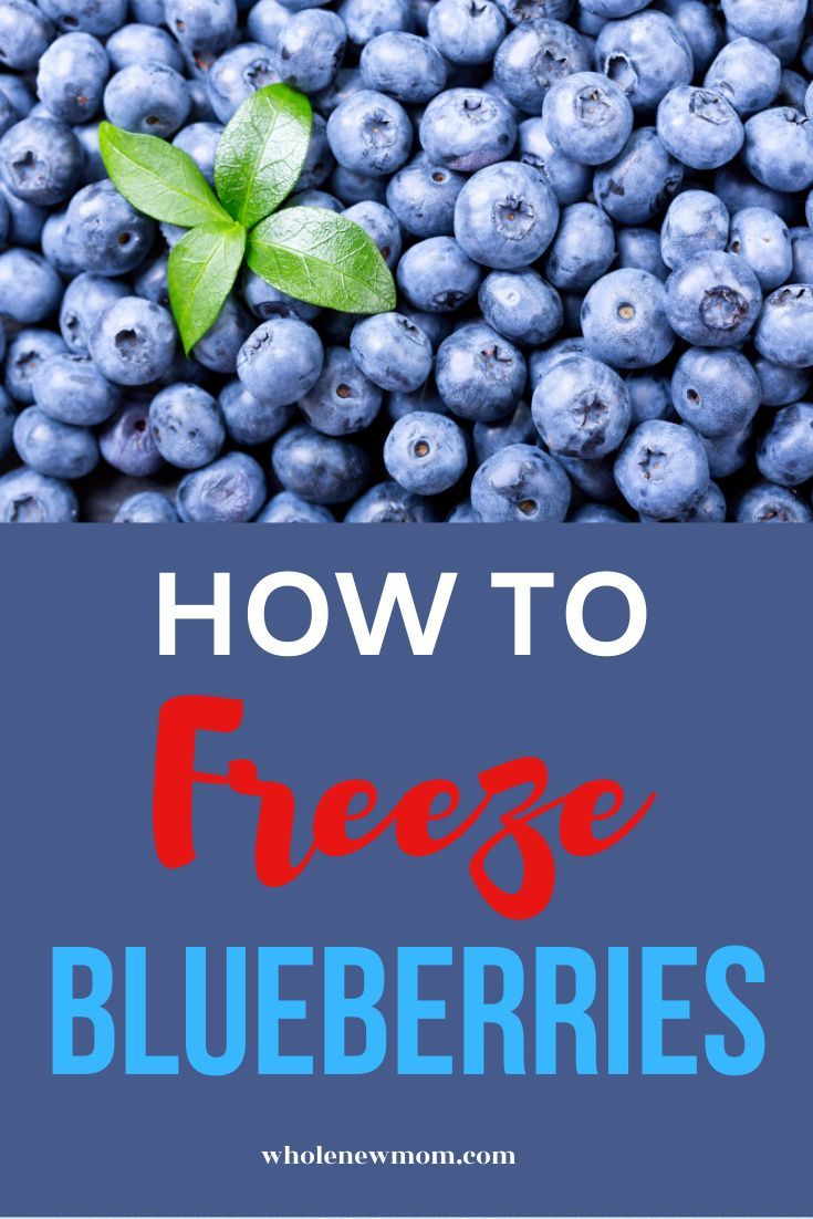 How do you freeze blueberries in 2020 blueberry frozen
