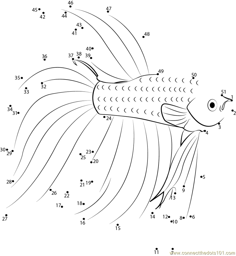 Connect the dots Betta Red Fish worksheet Dot to dots page