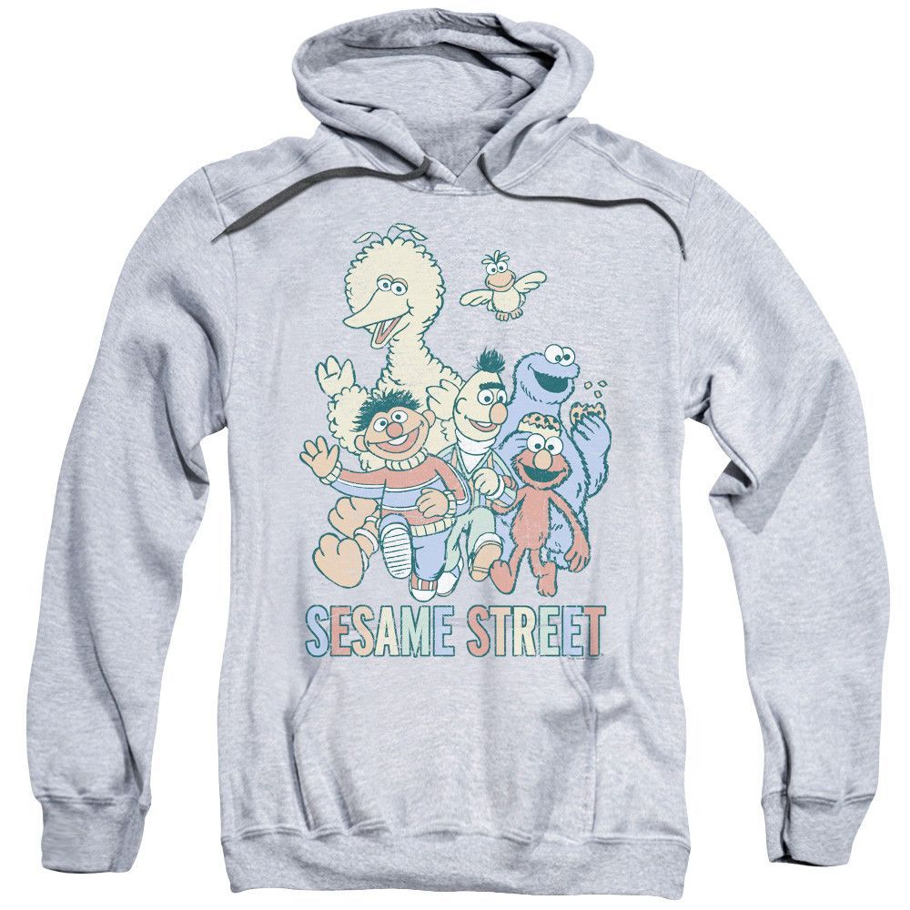 Sesame Street - Colorful Group Adult Pull-Over Hoodie