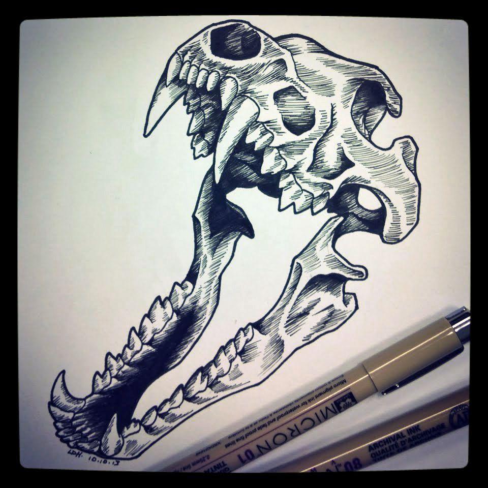 Wolf skull by rdeyedreamsviantart on deviantart really
