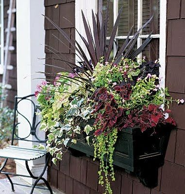 fall flower boxes
