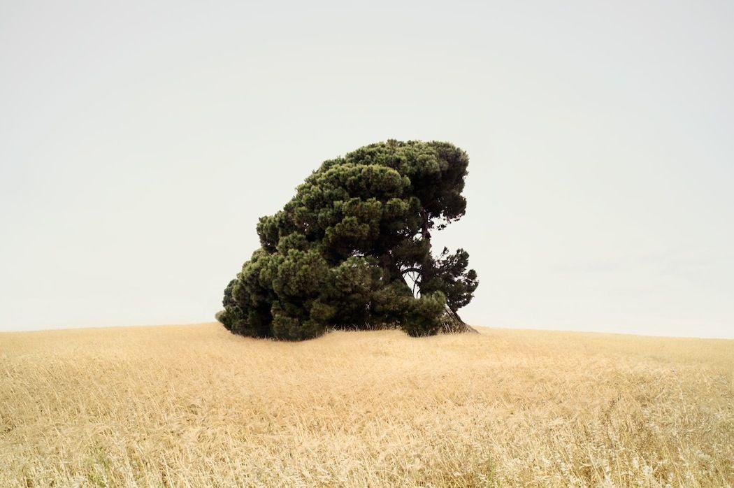 Photographer Petros Koublis captures enchanting landscapes. More on iGNANT.de...