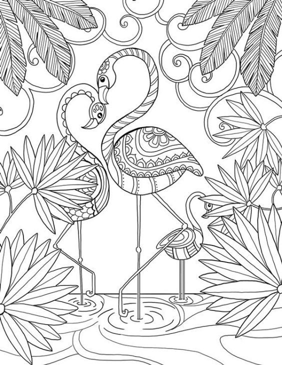 Beautiful doodle art of a flamingo bird coloring page for