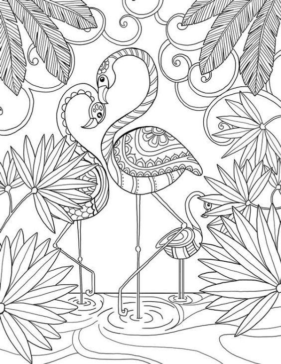 Beautiful Doodle Art Of A Flamingo Bird Coloring Page For Adults Bird Coloring Pages Coloring Pages Flamingo Coloring Page