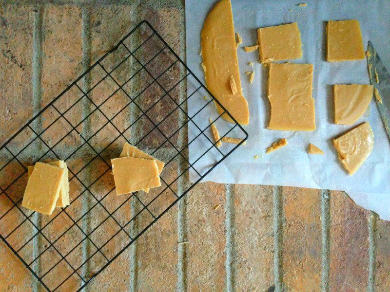 SunButter Fudge – Grain Free / Nut Free / Dairy Free / Sugar Free – SCD/GAPS/Paleo/Primal