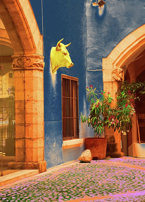 bull head in a Patio Old Town Palma de Majorca   art photography, by mallorcacolors, art print for sale in Fine Arts America, colorful, pastel colors, blue and red, the streets of Mallorca as source of inspiration, digitally treated, fine art photography