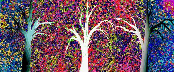 THREE AWESOME TREES
