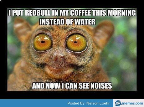 c85556430290050d8991c965a135f926 redbull in coffee see noises lemur cool pinterest lemur