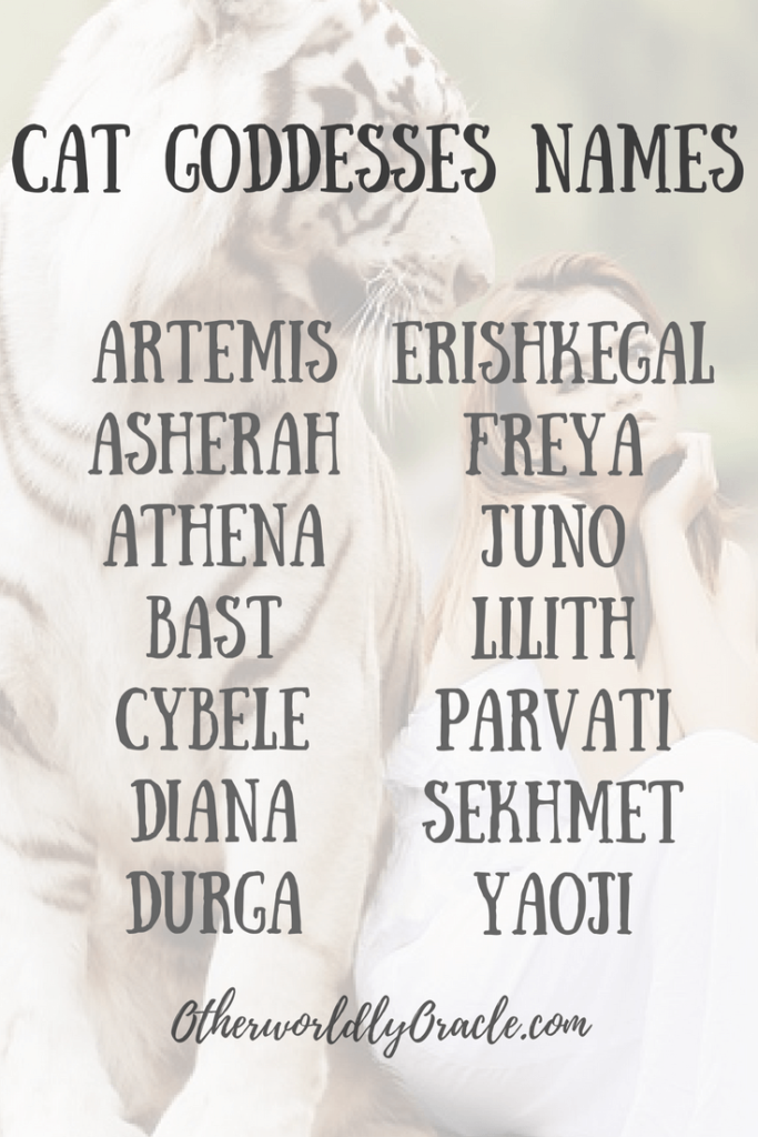 Cat Goddesses & Male Cat Gods + How to Honor Them Names
