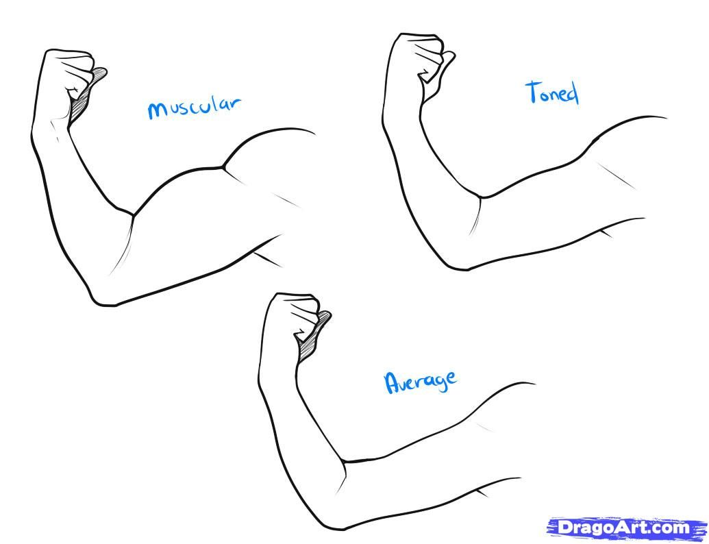 Full Male Body Reference