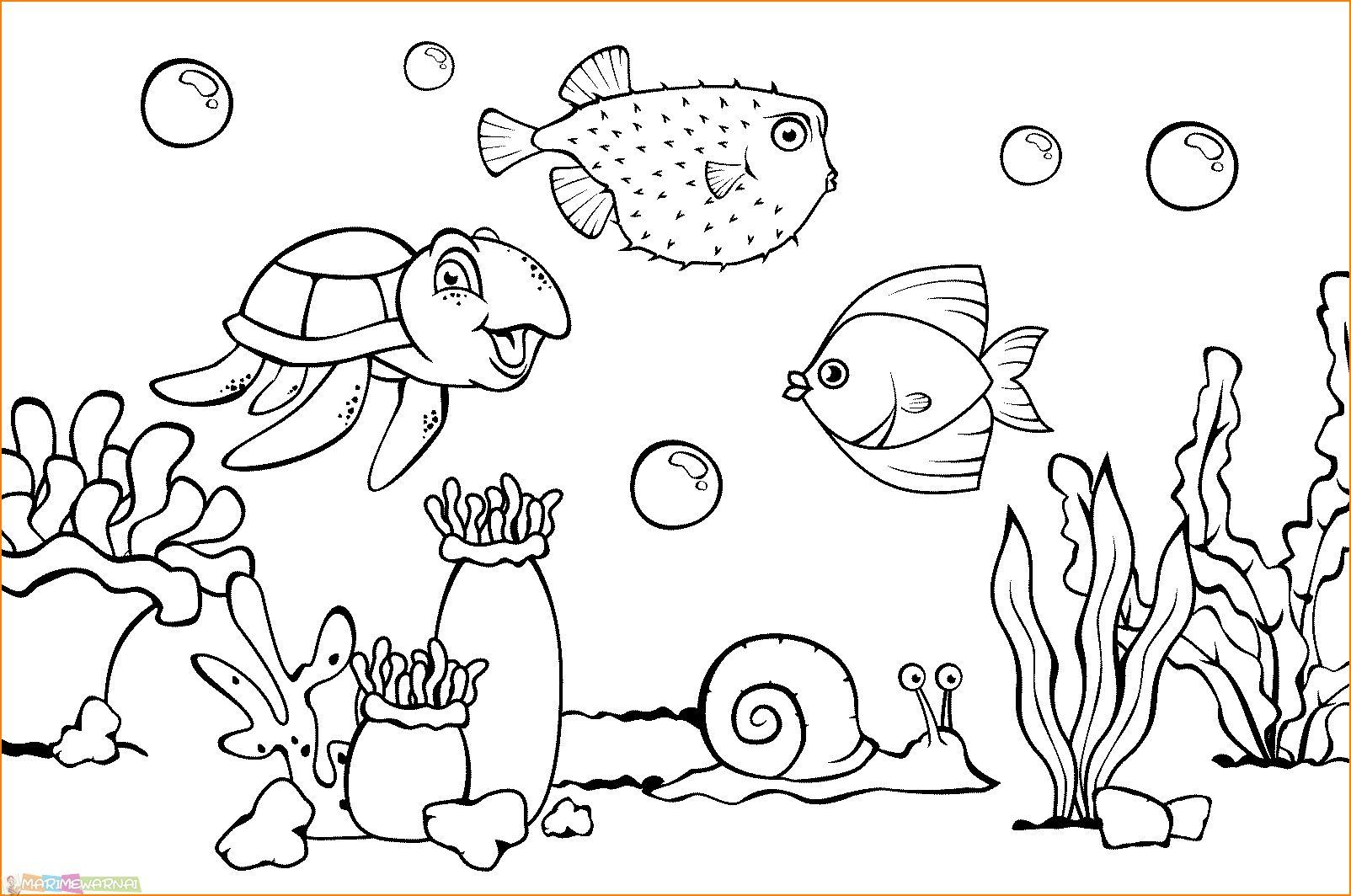 Image Result For Gambar Kartun Dasar Laut Sketsa Kehidupan Laut Pemandangan