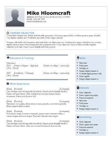 Icons and Bullets - Free Resume Template by Hloom Resume - microsoft free resume templates