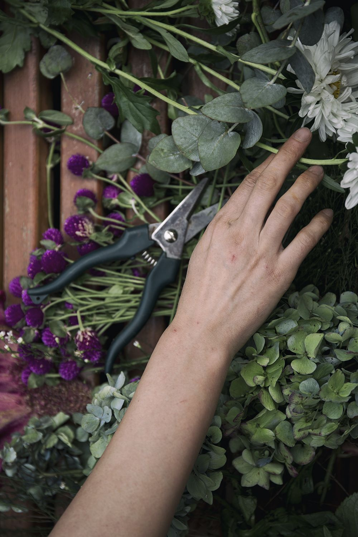 Plants Fitbit flex, Fitbit, Wearable