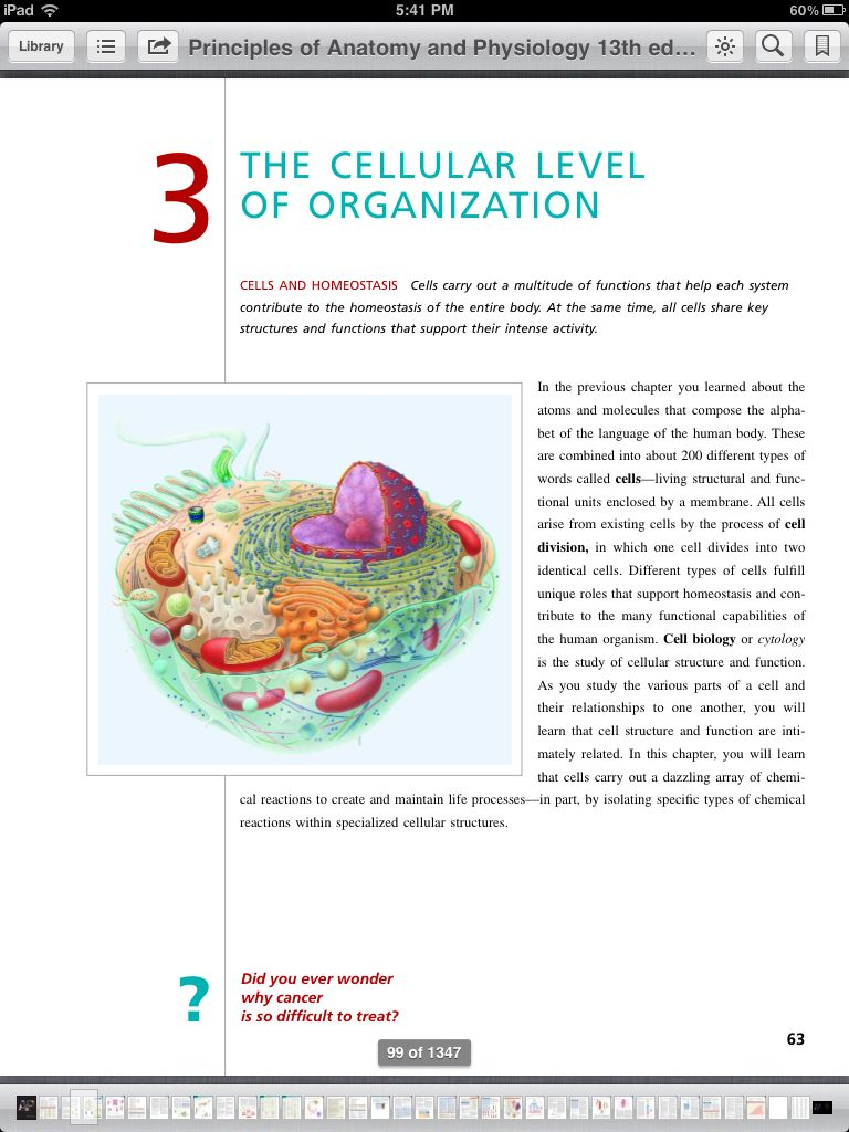 51 Chapter 3 The Cellular Level Of Organization Ideas Anatomy And Physiology Cellular Level Physiology