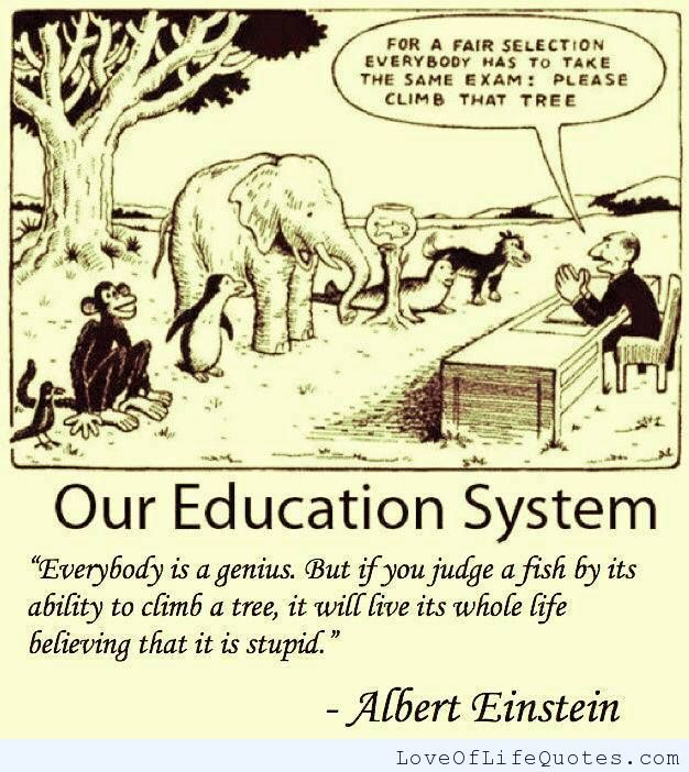 Albert Einstein quote on our education system - http://www.loveoflifequotes.com/funny/albert-einstein-quote-on-our-education-system/