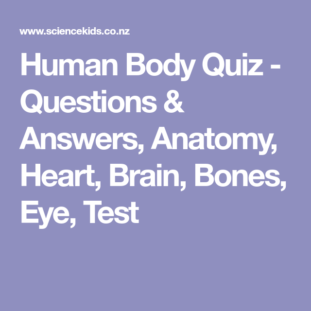 Human Body Quiz - Questions & Answers, Anatomy, Heart, Brain, Bones ...