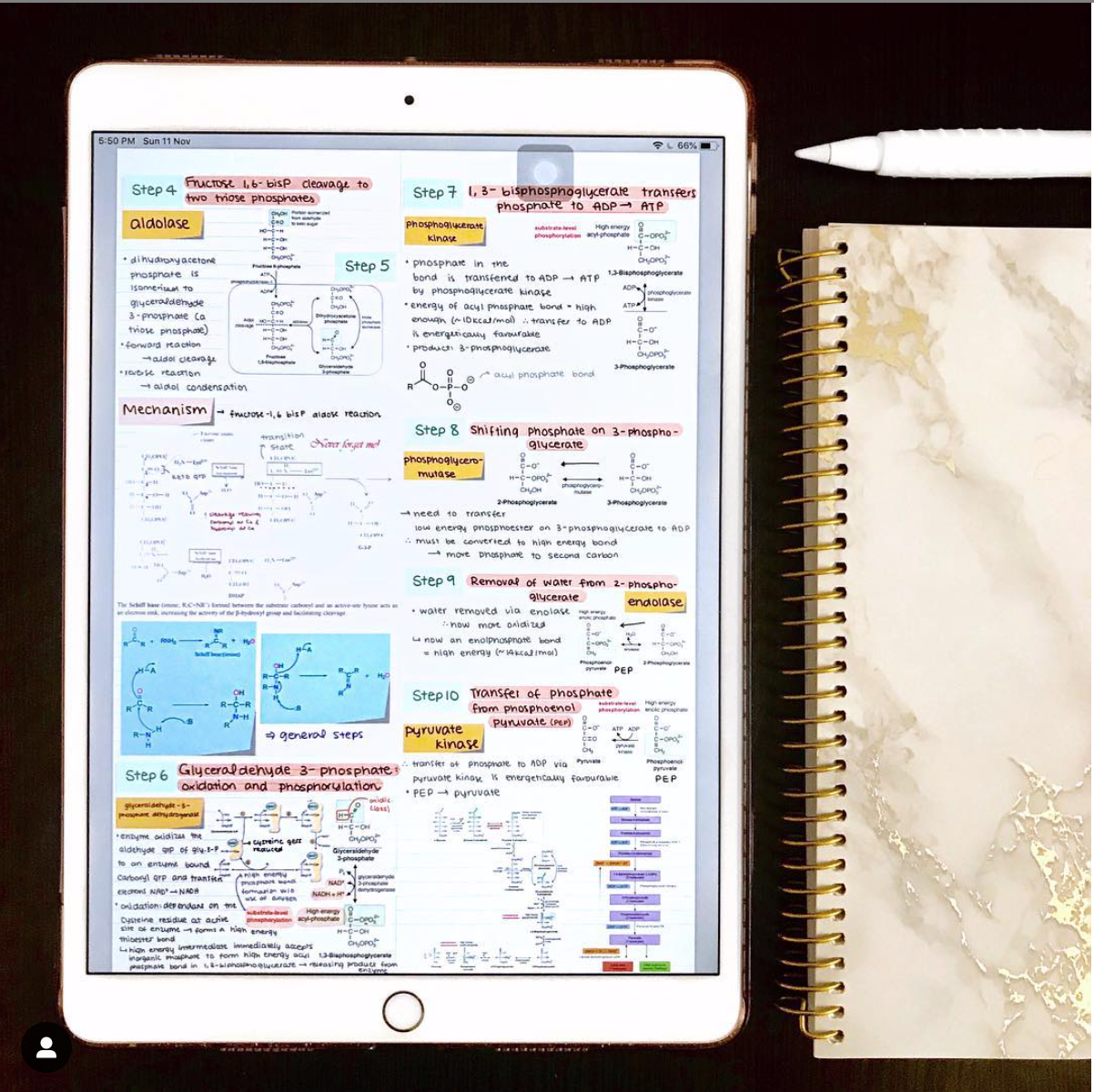 How To Create Good Looking Notes On The Ipad Goodnotes Blog School Organization Notes Notes Inspiration Good Notes