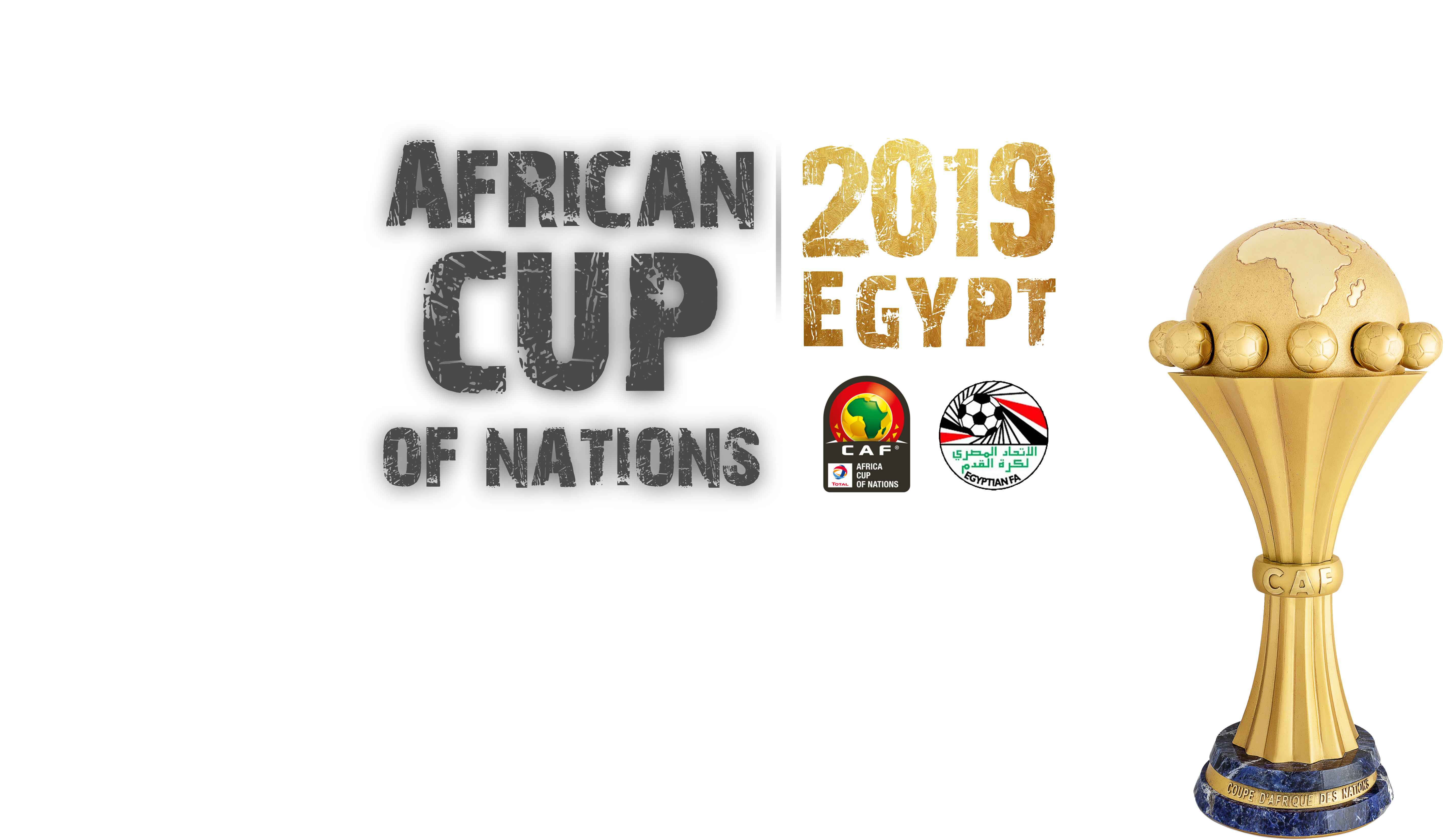 Pin By Wael Mostafa On Egypt African African Nations Nations Cup