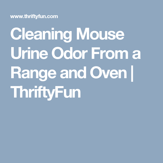 Cleaning mouse urine odor from a range and oven thriftyfun this is a guide about cleaning mouse urine odor from a range and oven to your horror that odd odor in the kitchen is the result of a mouse exploring your fandeluxe Image collections