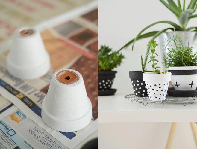 blumentopf bemalen und sonnenblume pflanzen mit kindern sinnenrausch nachmachtipp bemalter. Black Bedroom Furniture Sets. Home Design Ideas