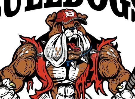 Bulldog muscular. Eps vector of baseball