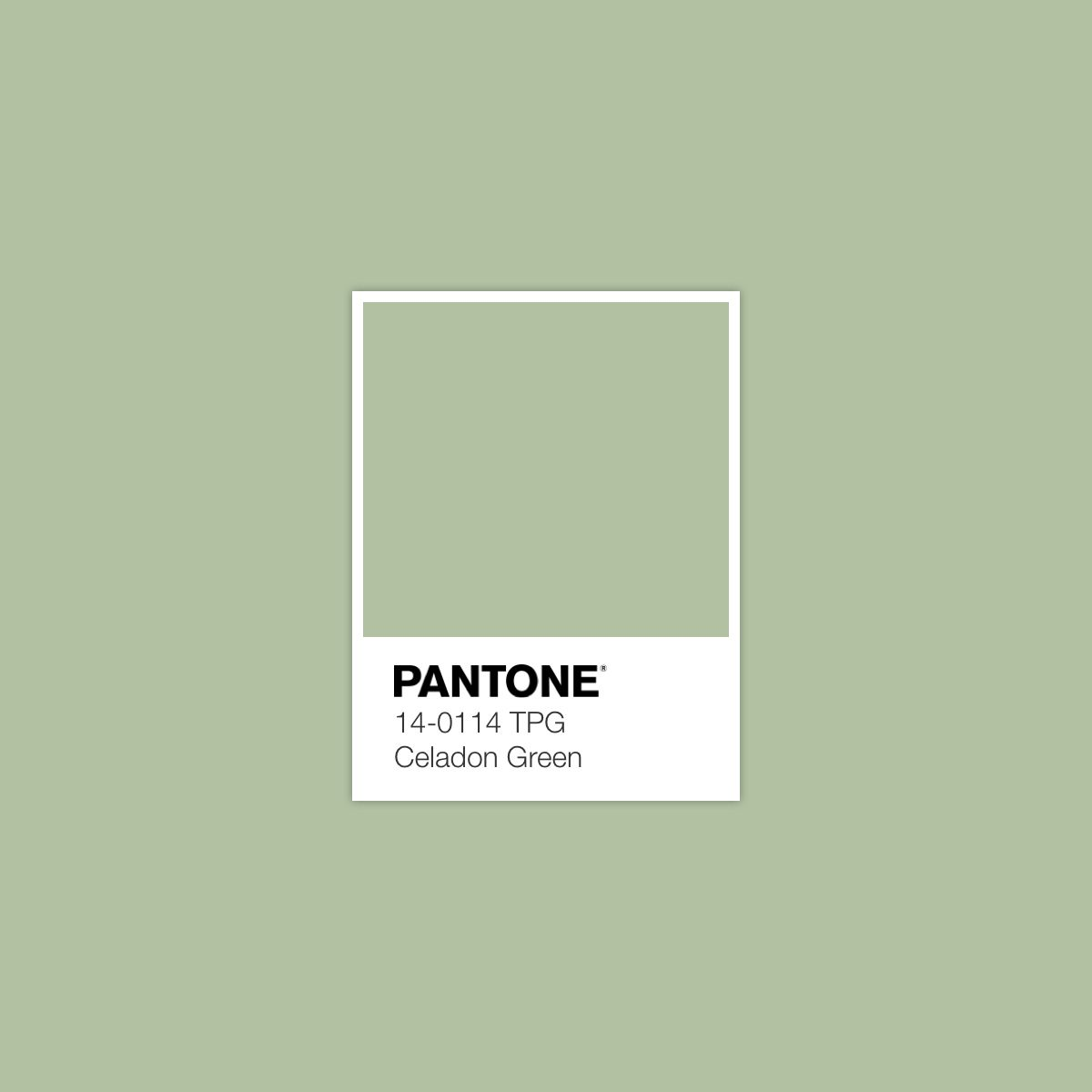 Celadon Green February 4 2017 Pantone Colour Color Combinations