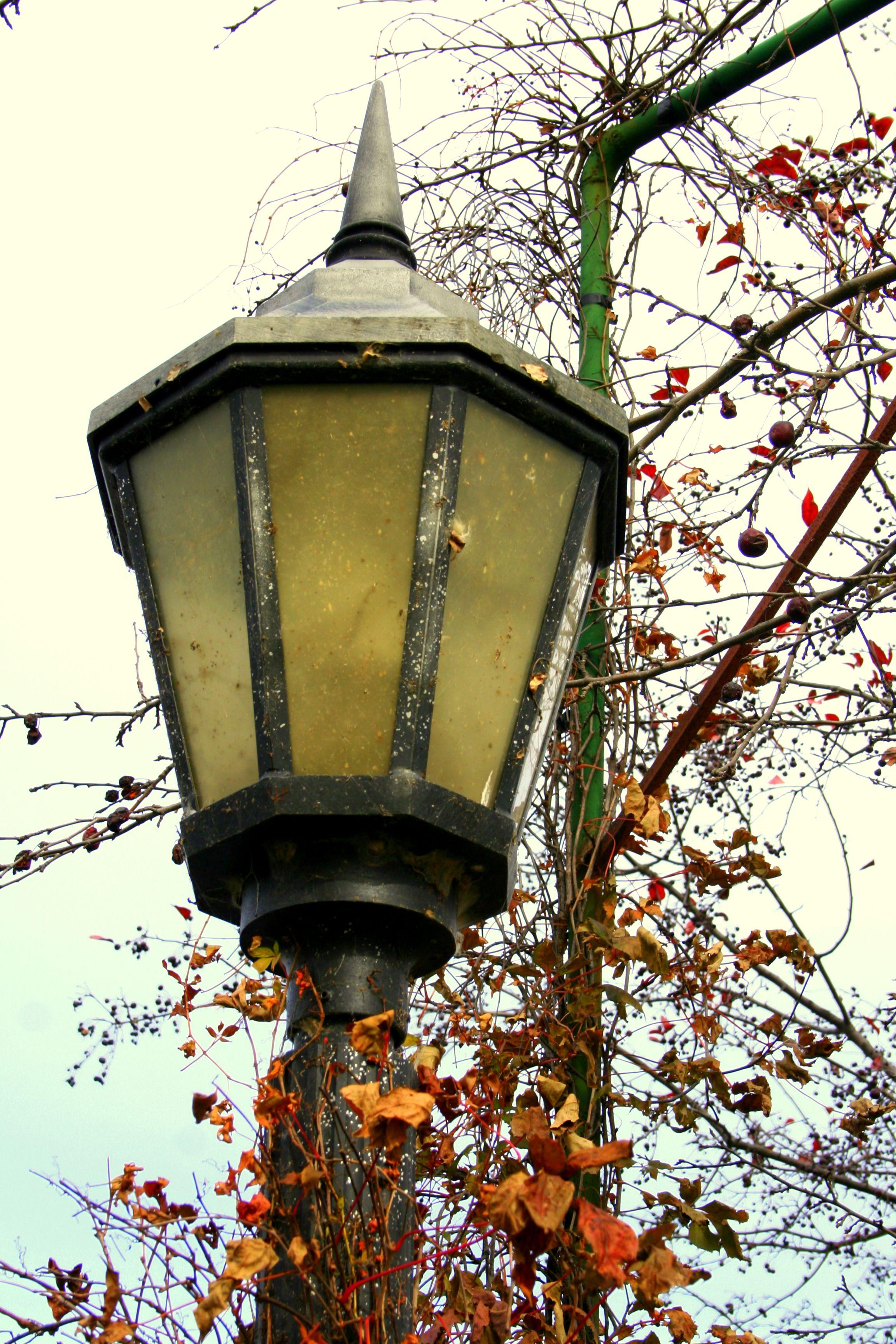 Lamp Post Lamp Post Lantern Post Street Lamp