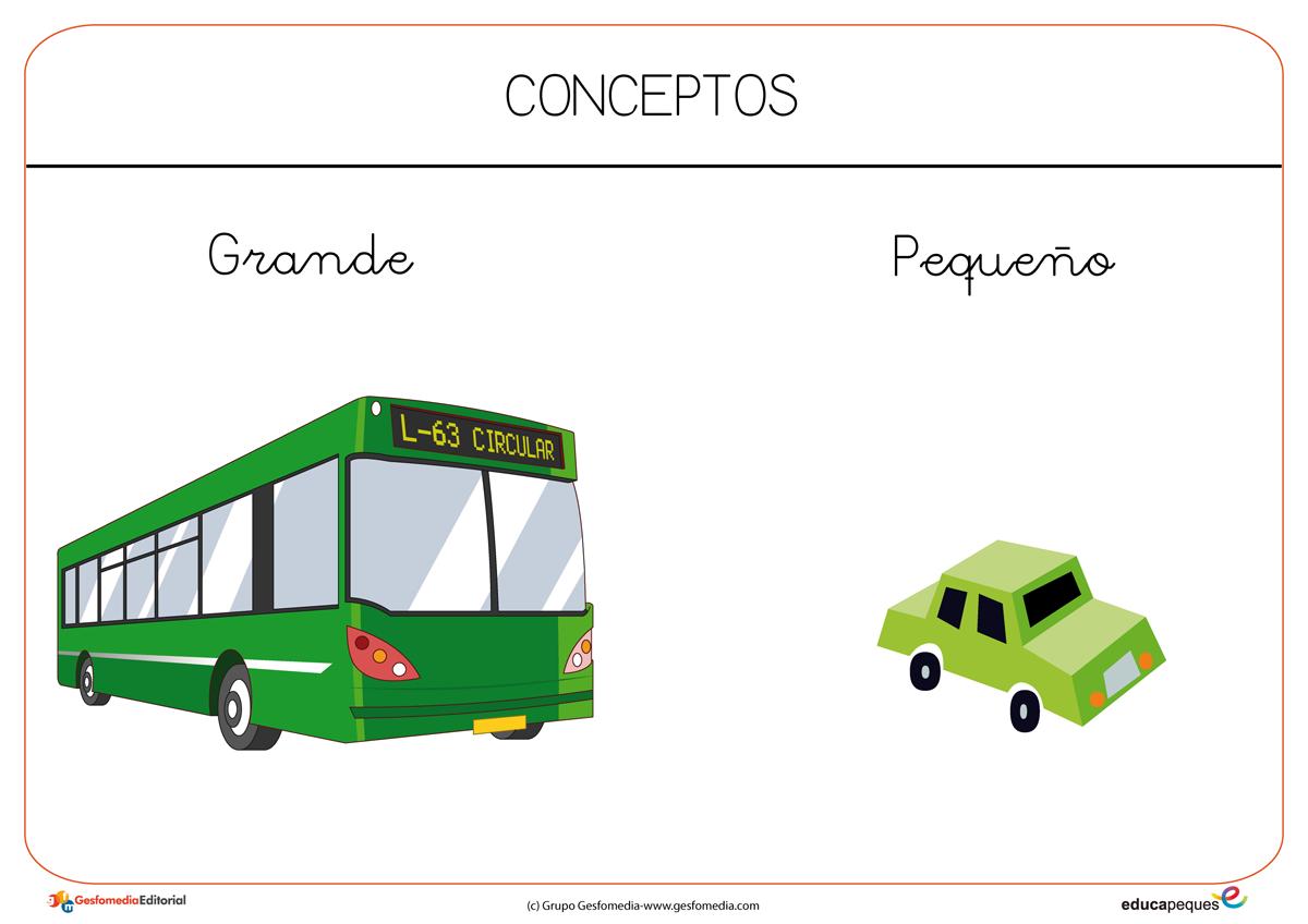 Conceptos Basicos En Educacion Infantil Fichas Para Trabajar En El Aula