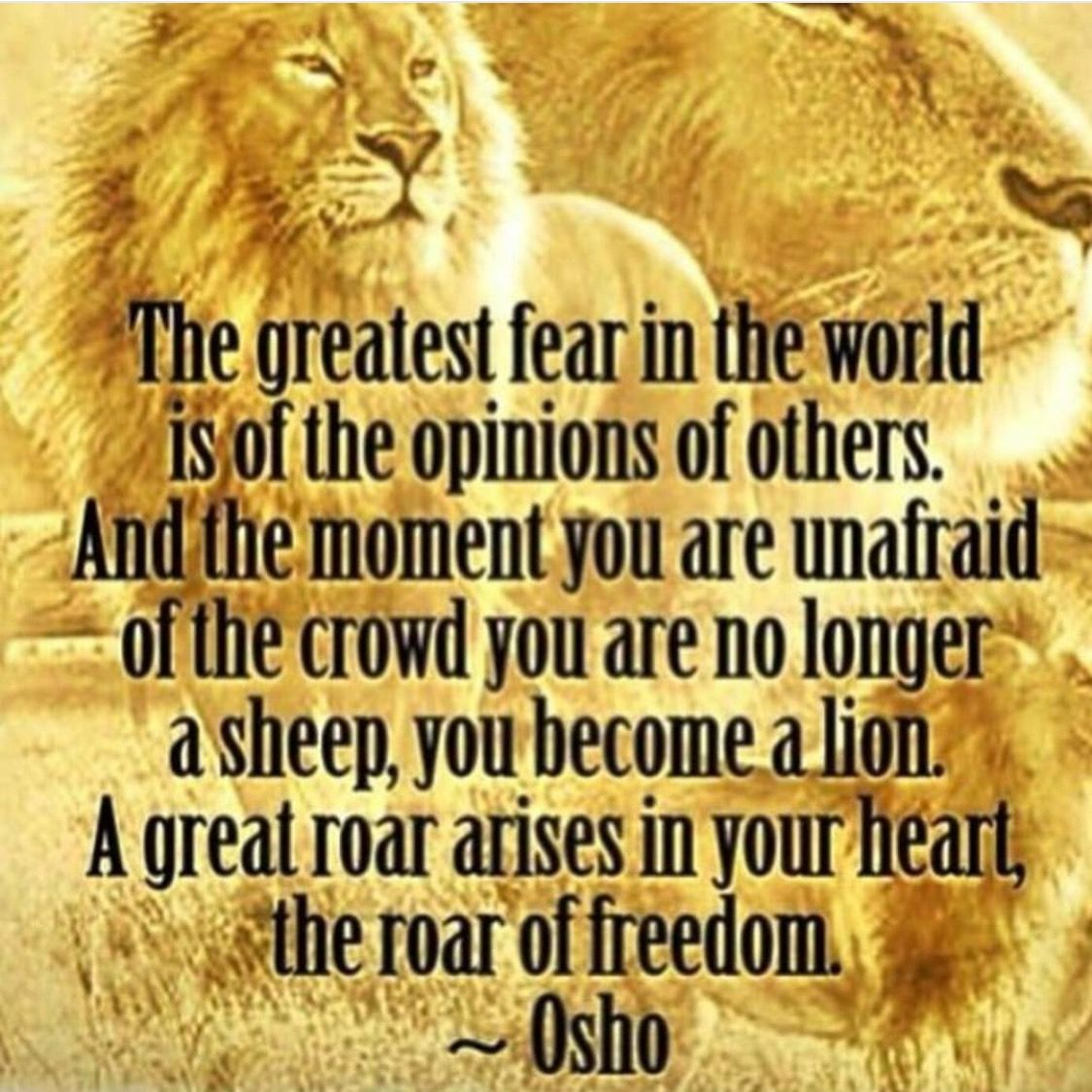 Pin By Russell Clayton On Resistance Quotes Fear Quotes Osho