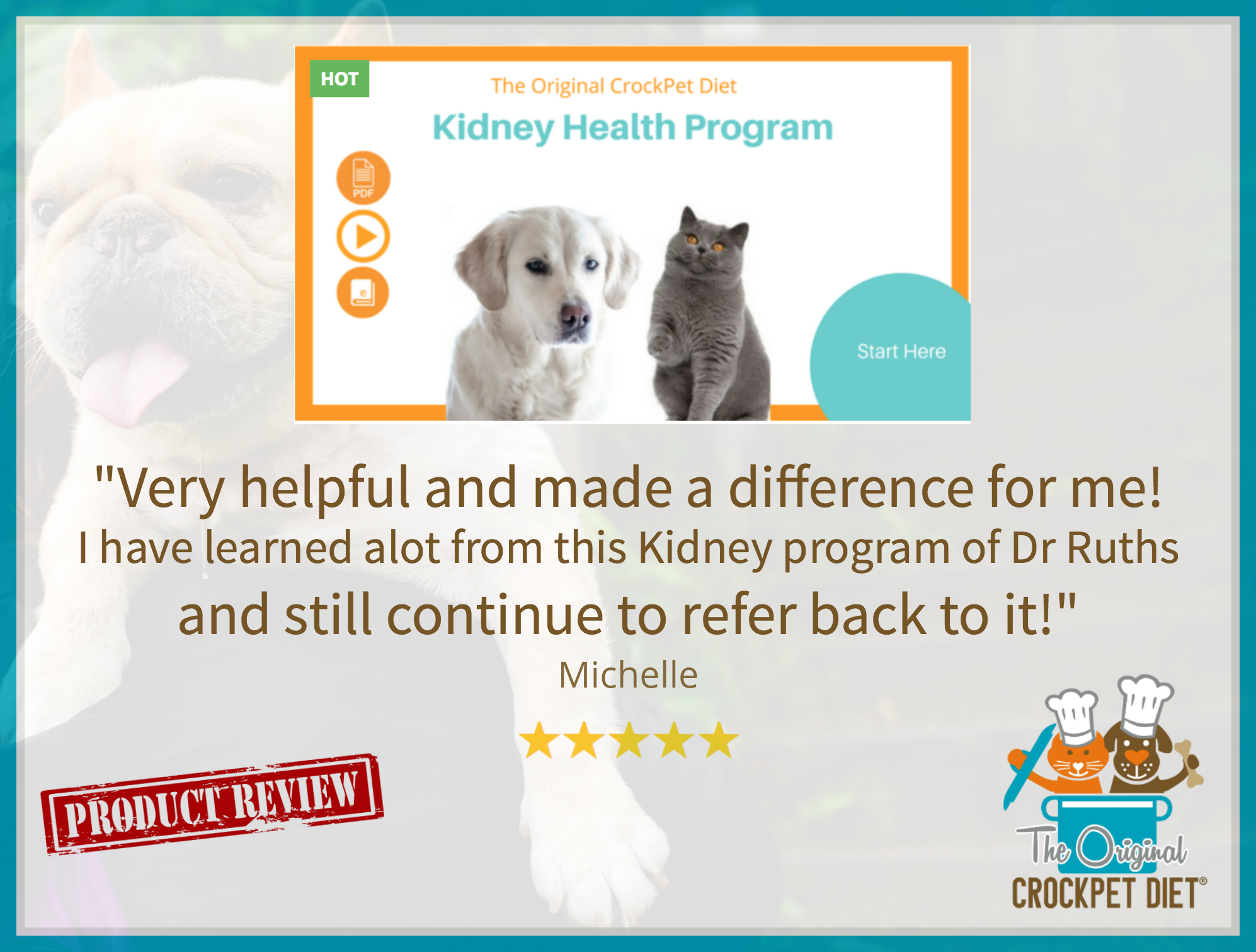 The Comprehensive Kidney Health Program for Dogs and Cats
