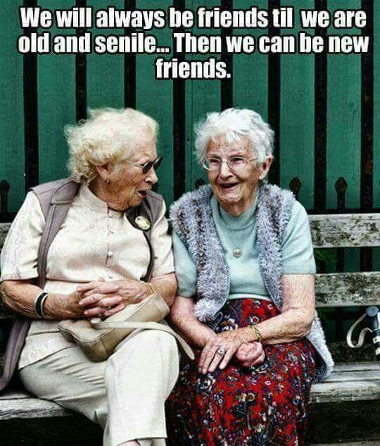 Happy National Best Friends Day Old Lady Humor Friendship Humor Old Women