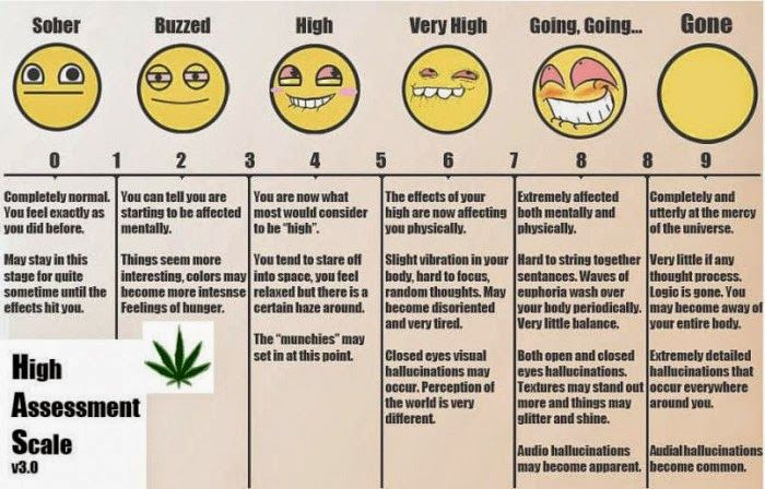 An exact scale of highness levels  for me anymore  stay sober and fit weed detox also rh pinterest
