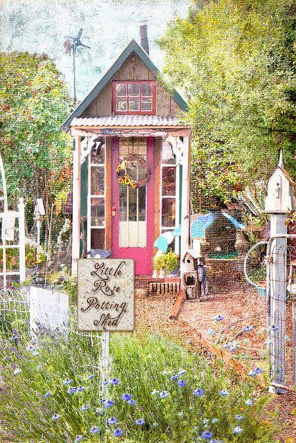 Little rose potting shed Rose cottage, Backyard