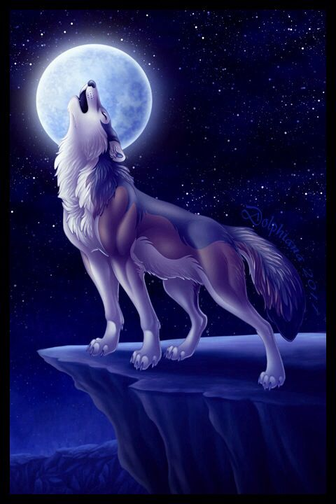 Photo of howling wolf on rock