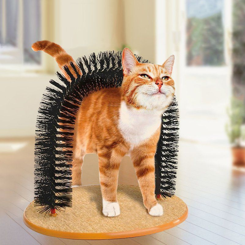Fancy Purrfect Arch Self Groomer Cat Brushing Cat Grooming