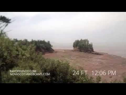 50ft Tides In Burntcoat Head Park Nova Scotia Favorite Places World Salt And Water