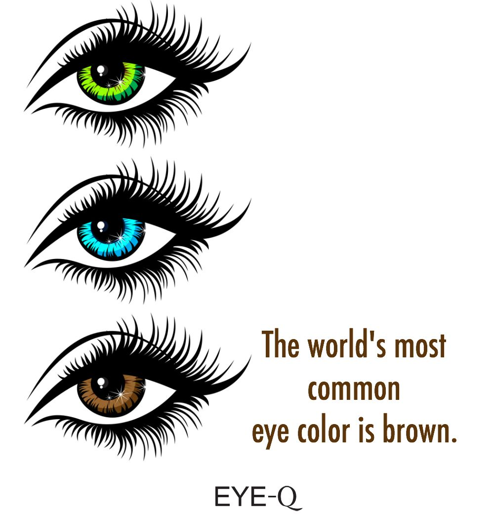 The world's most common eye color is brown. #eyefacts