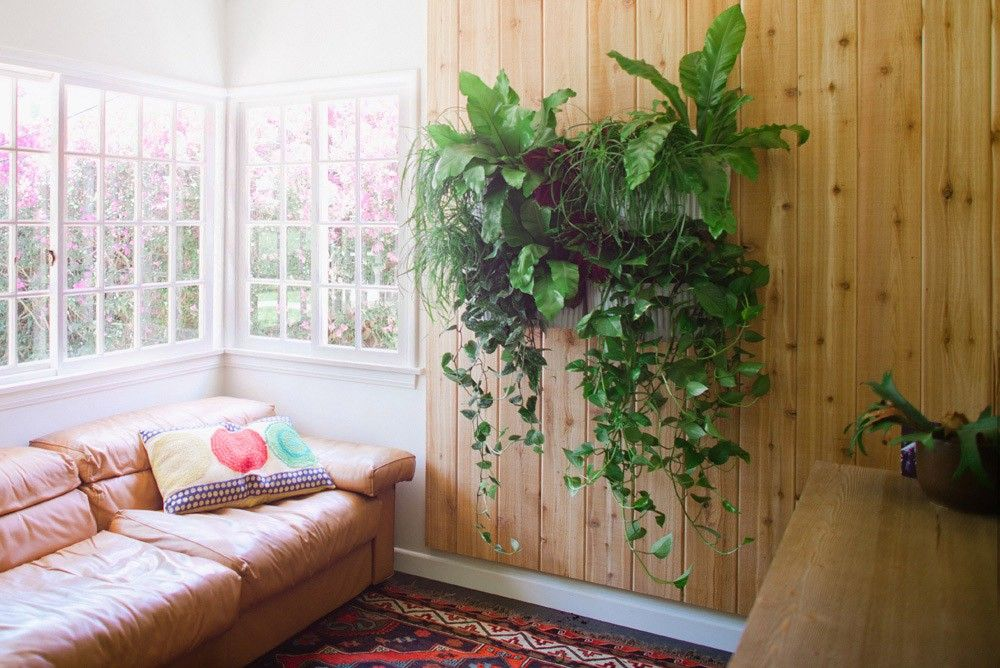 Could It Get Any Easier To Make Yourself A Living Wall? Get A Wrooly Pocket  And Plant It!
